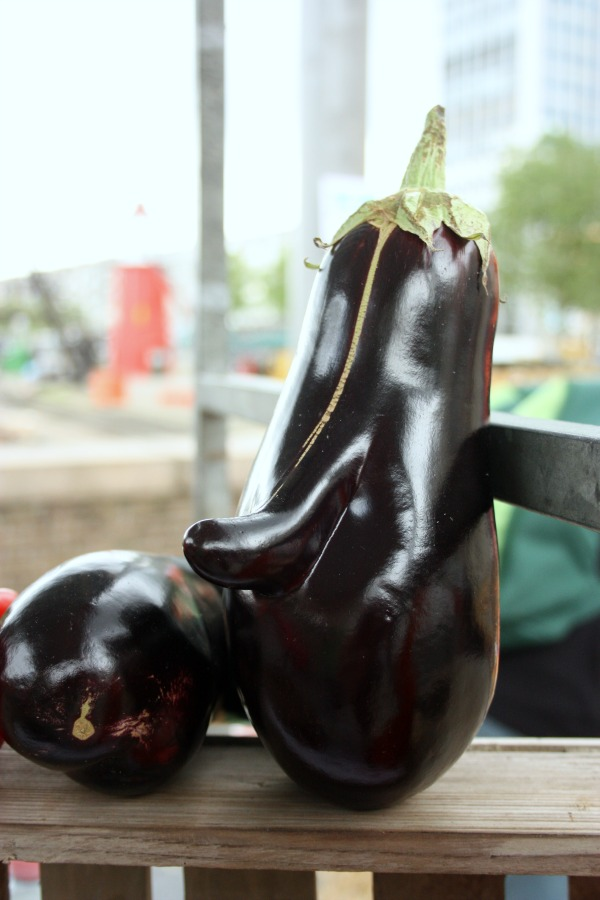 DAMs Food Waste aubergines | green and the cities